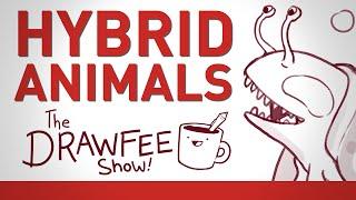 Hybrid Animals – THE DRAWFEE SHOW