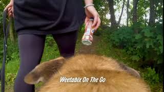 Weetabix On The Go - On a Walk Advert