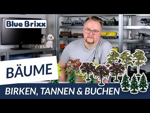 Buchen, 3er-Set