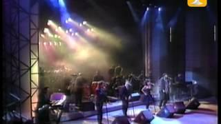 Juan Luis Guerra, Me Enamoro de Ella, Festival de Viña 1991
