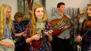 No Roots (Alice Merton Cover) | The Petersens