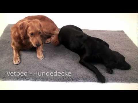 Vetbed Shop Premium Vetbeds Hundedecke Thermodecke Isobed SL England