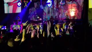 Animal Collective -  Daily Routine (Live)