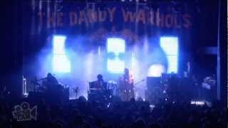 The Dandy Warhols - I Love You (Live in Sydney) | Moshcam