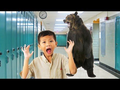 Trump's Education Secretary: Bears Are Threatening Our Schools