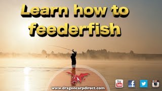 Learn brilliant feeder tips and catch more bream and roach