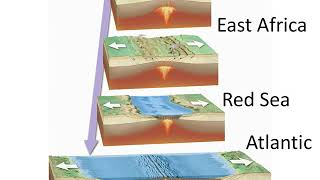 Continental rifting Formation of a new ocean basinp