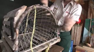 Build a Lobster Trap - Newfoundland and Labrador, Canada