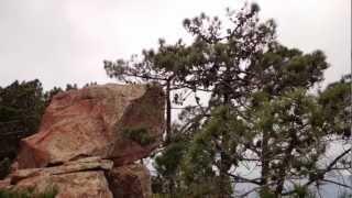 preview picture of video 'Ruta Sierra de Borriol,16-02-2013.'