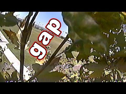 tried-gaps-but-got-a-tree-instead--zohd-dart-fpv-wing-