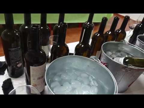 Fiesta de la vendimia en Mollina