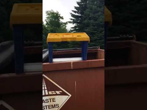 Raccoon mom and kits stuck in a dumpster in collin