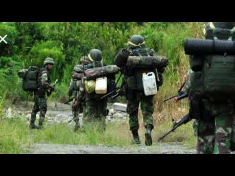 Berita Terbaru, Kontak Senjata TNI VS OPM, Berita Terkini