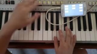 Audio Multi Pad cho đàn organ.