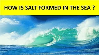 HOW IS SALT FORMED IN THE SEA ? || WHY IS SEA WATER SALTY ? || SCIENCE VIDEO FOR KIDS