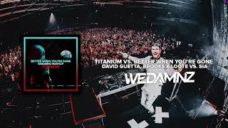 David Guetta, Brooks & Loote Vs. Sia   Titanium Vs. Better When You're Gone (WeDamnz Mashup)