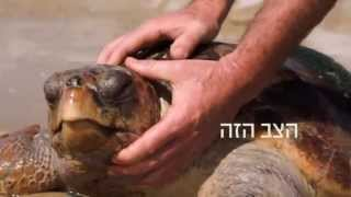 preview picture of video '50 לרשות הטבע והגנים'