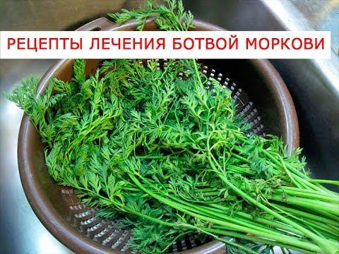 Рецепты лечения ботвой моркови озвучено