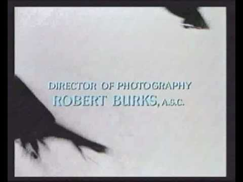 Hitchcock's 'The Birds' Scene (Soundtrack by Chris Frost) 4