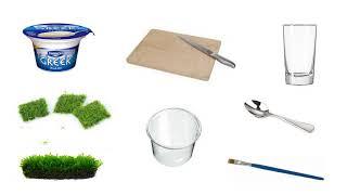 tutorial: dry start /yogurt method for aquatic moss