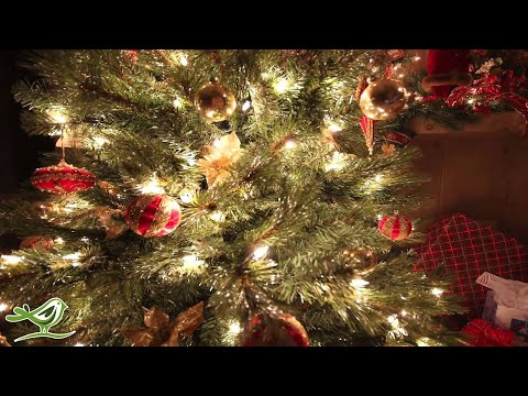 O Holy Night | Instrumental Christmas Music | Christmas Song