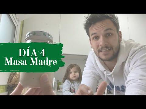 Masa Madre Sin Excusas - DÍA 4 #retomasamadre