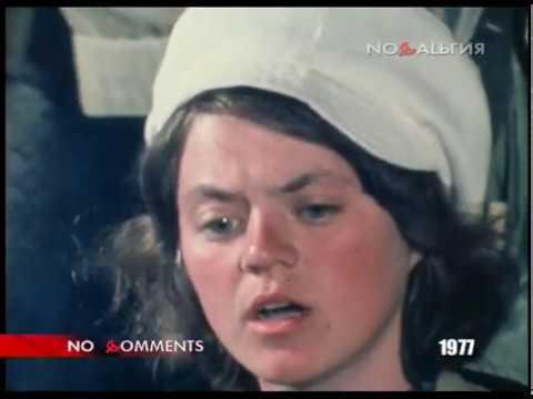 Рыцари без страха и упрёка (1977) - no comments