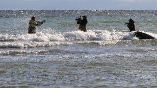 Рыболовные базы в дании