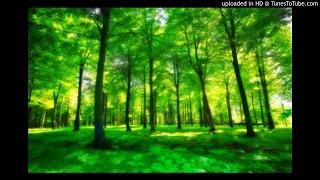 Myazisto - Lublin (Original Mix)