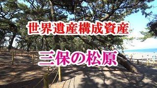 静岡観光スポット世界遺産構成資産「三保の松原」を散策