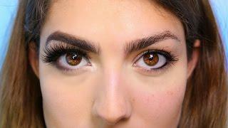 Makeup Evolution