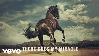 Bruce Springsteen   There Goes My Miracle (Lyric Video)