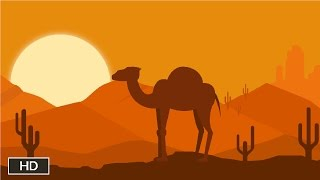 Where do camels store water?