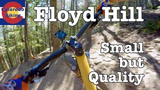 Full review of the new Floyd Hill trails, as of June 2019.