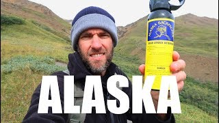 How Expensive is ALASKA? One Day in Denali National Park