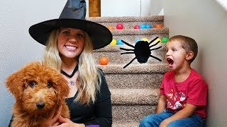 Witch Steals Golden Doodle Puppy!