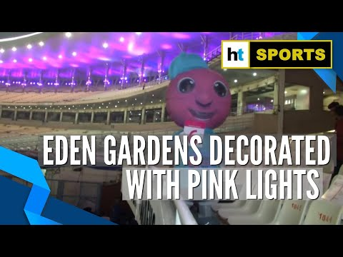 First day-night Test: Eden Gardens decorated with pink lights for pink-ball match