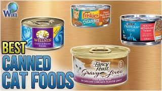 10 Best Canned Cat Foods 2018