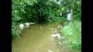preview picture of video 'Hochwasser bei Esslinger Furt, Eingang Lobau, 6.6.2013 - Höchststand'