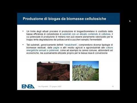 Biocarburanti, Biogas, Biomasse, Biometano, Digestori anaeroobici, Gas naturale, Metano, Zootecnia