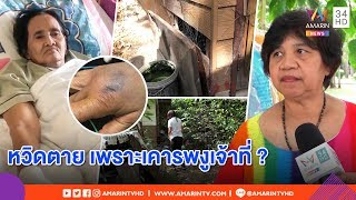 """ทุบโต๊ะข่าว :ยายเผยนาทีเกือบตาย เลี้ยงงูเห่าในบ้านคิดว่า """"เจ้าที่"""" สุดท้ายโดนแว้งกัด16/04/62"""