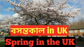 Spring in the uk.বসন্তকাল  in uk.