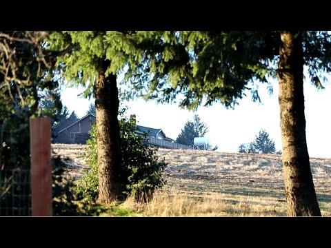 Neighbors raise stink over proposed hemp, pot facility