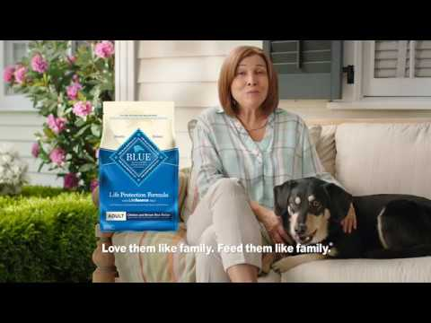 Blue Buffalo Life Protection Large Breed Adult - Chicken & Brown Rice (30 lb) Video