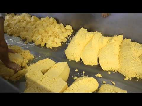 Rustic Cheese: Visit to Appleby's Cheesemakers
