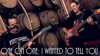 ONE ON ONE: Matthew Sweet  - I Wanted To Tell You July 18th, 2014 City Winery New York