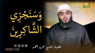 سنجزى الشاكرين   برنامج صلاح القلوب مع فضيلة الشيخ عمرو أحمد