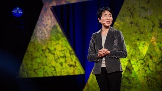 An economic case for protecting the planet | Naoko Ishii