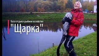 Платная рыбалка с проживанием в беларуси