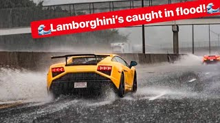 WATCH THESE RARE LAMBORGHINI'S DRIVE FLOODED FREEWAY LIKE A BOSS!